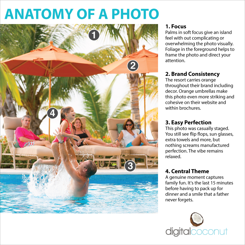 Anatomy of a photograph